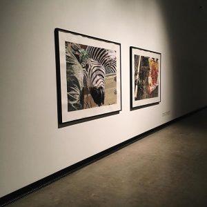 odenbach @kunsthallewien MQ – MuseumsQuartier Wien