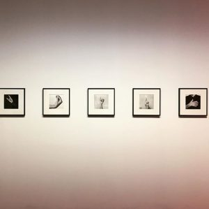 Bruno Munari Supplemento al dizionario italiano- I Gesti, 1958 #brunomunari#igesti#corna#horns#gnocco#chevuoi#what#smilzo#thin#bugia#crossedfingers#onore#honour#bodylanguage#poetics#kunsthallewienvienna Kunsthalle Wien