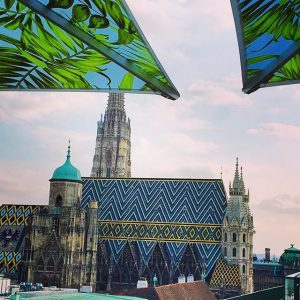 Saturday Night Rooftop Views 🍸 @cafebarbloom #cafebarbloom #vienna #austria #holiday #bar #drinks #cocktails #views #skyline #cathedral #historical...