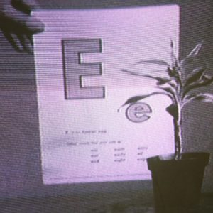 John Baldessari is trying to teach a plant the alphabet. We see a potted plant on a...
