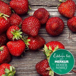 Erdbeerkuchen, Joghurt mit Erdbeeren, Erdbeerbowle, Marmelade – wir sagen