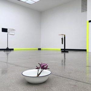 #jeanlucmoulene #exhibition #secession #wien #installation #conceptualart #contemporaryart Vienna Secession