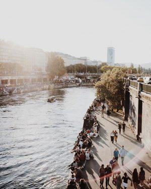 ☀️☀️☀️☀️ #donaukanaltreiben #wien Donaukanal