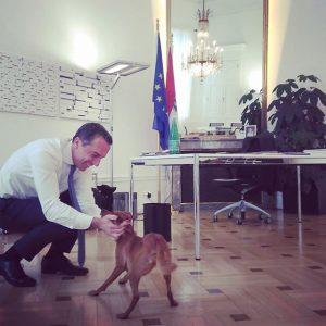 Hundebesuch im Kanzleramt. Sansa hielt mich gestern ganz schön auf Trab 😉 #bundeskanzleramt #aufdenhundgekommen