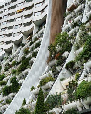 wohnpark alterlaa #vienna #wien #architecture #igersvienna #igersaustria #ig_architecture #alterlaa #u6 #urban #utopia #plants #summer #holiday #summer2017 #explore...