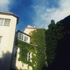 #chillen #garden #monday #afterwork #vienna #lovevienna #vienna_austria #lifeisgood Gartencafé