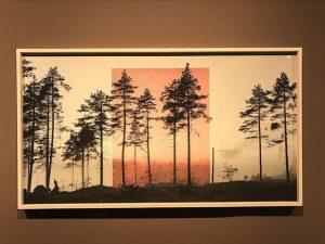 #JaakkoKahilaniemi #VisionsofNature KUNST HAUS WIEN. Museum Hundertwasser