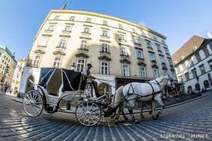 Caleașca imperială. Amintire tot din Viena. Vienna, Austria