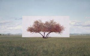 Mensch schaut Natur: #kunsthauswien #opening