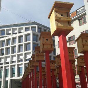 #wien #vienna #rochusmarkt #vogelhaus und #vogelhaus und #vogelhaus und... #postamrochus #wienliebe #wien_love #sonnenschein #1000thingsinvienna #1030 #austria #igersaustria...