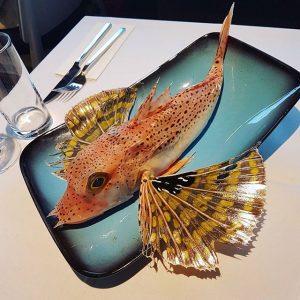 Fresh Gurnard #vienna #fresh #fish #seafood #wien #austria #österreich #naschmarkt #red #gurnard #Umarfisch ...