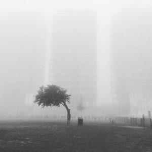 schön ist es frühmorgens im nebel #foggymorning #vienna #schweizergarten Schweizergarten