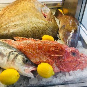 Frische Fische von heute #wild #steinbutt #drachenkopf #zander #wolfsbrasch #meerbrasse #rotbarsch #knurrhahn #rote#barbe ...