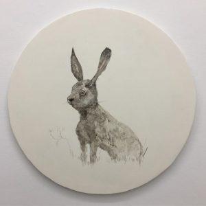 #sophiereinhold #exchangeofvaccums #rabbit #anderhülben #vienna @sophie.tappeiner Sophie Tappeiner