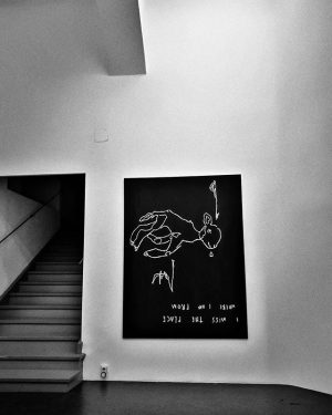 @anouklammanouk #imisstheplacewhereiamfrom at @galeriesteinek #🖤 until 21.of December #loveherart #lamblove #artwatching #art