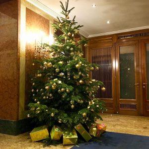 We wish you a Merry Christmas & Happy Holidays 🎄 #hotelambassadorvienna #theplacetobe Hotel Ambassador Vienna