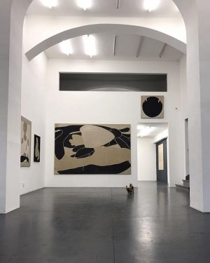 Emilio in @galeriesteinek / 📷 @marionmandl #anouklammanouk Galerie Steinek