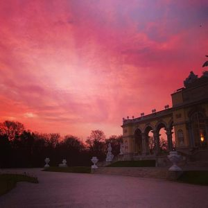 Beautiful early running Schönbrunn