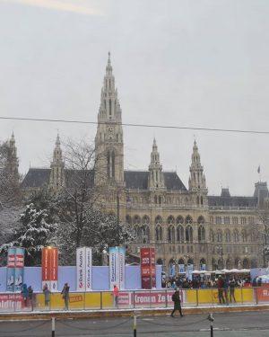 Anyone going skating on this cold day? 😄 Wiener Eistraum. ❄ #rathaus #rathausplatz #wienereistraum #viennanow #viennainnout Rathausplatz,...