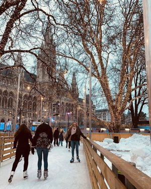 📷👉@piadventures_👈 #wien_love Follow us 🔺 #wien #vienna #austria #österreich #travel #europe #architecture #trip #city #snow #vienna_city #vienna_austria