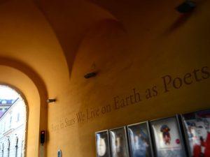 Born in Stars We live on Earth as Poets #goodmorning #Meteoritenpassage #auserirdisch #MuseumsQuartier #vomstrenzuerde #dichter #walkingvienna #imogwien...