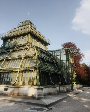 Such a beautiful construction 😍🌴#palmenhaus #schönbrunn #wien #vienna #travel #vacay #sightseeing #travelgram #instatravel #summerfeeling Palmenhaus Schönbrunn