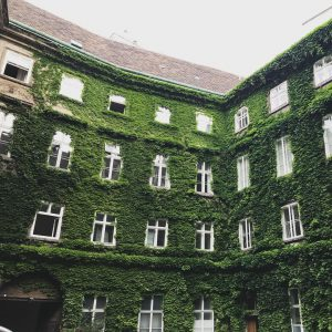 Secret courtyards of Vienna. #travel #traveler #vienna #wien #amexplatinum #makingnewfriends