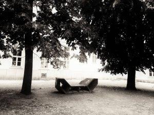 🌞 🌸 😍 #altesakh #barrio #havre #andabutterfly #wien🇦🇹 #Vienna #igersvienna #igerswien #blackandwhite #minimal