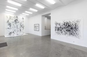 Exhibition views of our current show PER DYBVIG I Evig Din Svartfossen are online!  #perdybvig #christinekoeniggalerie Christine Koenig Galerie