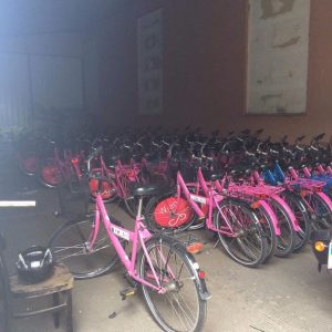 Pretties in pink! Our world famous ImPulsTanz bikes are fixed, shining bright, full of fresh air and...