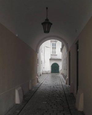 Zielführend #wien #vienna#österreich#austria#innerestadt #igersvienna#igersaustria#streetsofvienna #wiendubistsoschön#viennaclassics#meinwien #wiennurduallein#vienna_austria#innenhof #courtyard#doorsandwindows_one#door #wienerecken#viennaclassics#seeninwien #wonderlustvienna#viennagoforit #cobblestone#kopfsteinpflaster #visitingaustria#visitingvienna#europe_vacation
