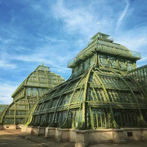 House of palms #palmenhaus #schönbrunn #vienna #wien #palmtrees #steampunk Palmenhaus Schönbrunn