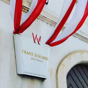 슈베르트생가는 볼 게 별로 없어서 다소 실망했으나, 슈베르트의 안경을 본 것으로 매우 만족. 슈베르트의 음악을 들을 수...