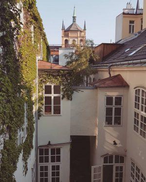 Passion cours intérieures  #cours #building #chapelle #vienna #austria #europe #germaninfluence 🌿🏡