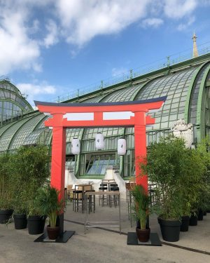 Welcome to Japan 🇯🇵 event #event #eventproduction #eventplanner #eventdesign #planwithus #japan #burggarten #vienna #welcome #themedevents 🇯🇵 #decor #dhalia