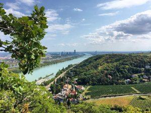 Diese traumhaften Spätsommertage sind perfekt, um die Wiener Stadtwanderwege einmal näher zu erkunden 😍☀️ Über dem Link...