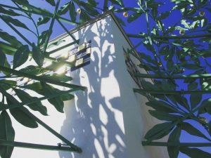 🤩 #secession #kuppel #jugendstil #beautifulvienna #shadowplay #newperspective #artcloseup