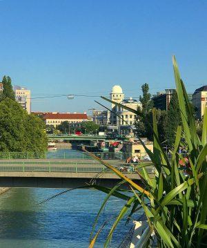 Have a beautiful night🌱🌸🌱🥂🍾🎶🎶😎✨💫👋🏻 Motto am Fluss