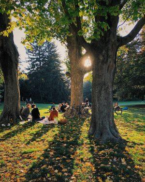 Was für ein wunderbarer Freitag heute 😍 Sonnig und warm genug, um zum Beispiel im Türkenschanzpark zu...