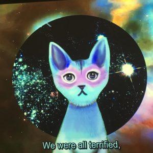 More cat content into politics? Pinar Yoldas Kitty AI: Artificial intelligence for governance. #underpressure #exhibition #freiraum @q21_vienna #artmagazinecc #artandpolitics Q21