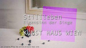 [NEW VID ONLINE] Still Life, Obstinacy of Things at KUNST HAUS WIEN  #still life #photography #Vienna #art