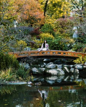 Mosaic of autumn colors. 🍁🍂🍃 Japanese garden Setagaya in the 19th district is a must visit place...