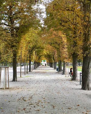 Remember to take a walk through the Augarten here in Vienna during Autumn, the colors are stunning...
