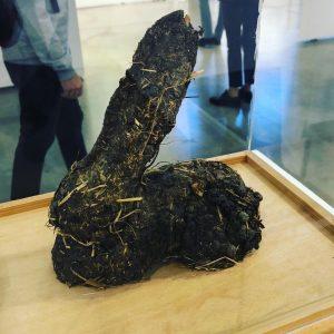 Hase. #dieterroth #montag ##rabbit