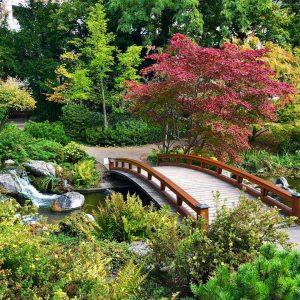 #setagayapark #japanese #garden #gogreen #vienna #wien #visitvienna #igers #igersaustria #igersvienna #1000thingsinvienna #welovevienna #at_urbanescapes #urbanescapes #naturephotography #instaphoto #photooftheday...