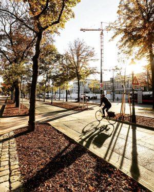 Golden October in Vienna. ☀ I prefer summer over autumn but I gotta say, the golden hours are pretty spectacular. . . . . . #igersvienna #igersaustria #discoveraustria #feelaustria #wonderlustvienna #wienmalanders #viennanow #austriantime #goldenhour #beautifuldestinations #passionpassport #urbanjungle  #moodygrams #cityscape #travelgram #earthgrammers  #lensbible #uniqueaustria #visualsoflife #visualwanderlust #liveforthestory #photooftheday #canon_photos #viennascene #vienna_austria #wienliebe #onlinevienna #girlscreating #exploretocreate #vienna_city