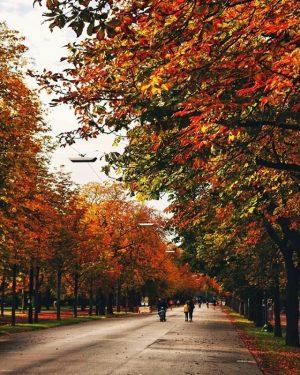 Das Wochenende läuten wir mit einem Spaziergang entlang der #Praterhauptallee ein, wo man ...