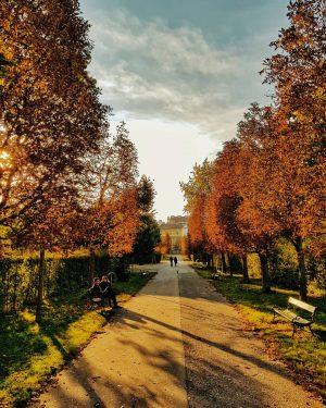 Vienna Augarten park ☀️colorful autumn🍁 🍃 Happy Monday 🍂🍁🍁🍁🍁 . . . . . #cities #viennanow #citybreaks...