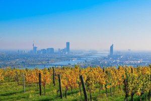Auch am #Nussberg geht der goldene Herbst nicht spurlos vorbei. Wir wünschen euch einen schönen Start in...