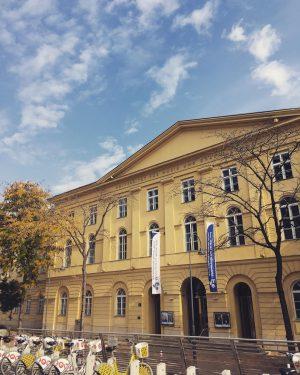 Kann der wunderbare Herbst, eingetaucht in alle möglichen Gelbtöne, bitte so bleiben? 💛 Universität für Musik und...